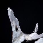 sculpture bois d'orignal meute de loups
